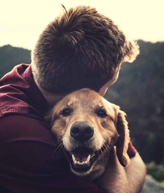 dog with a boy