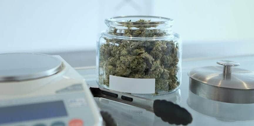 CBD Dispensaries Legal